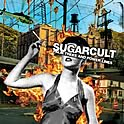 Sugarcult : Palm Trees And Power Lines